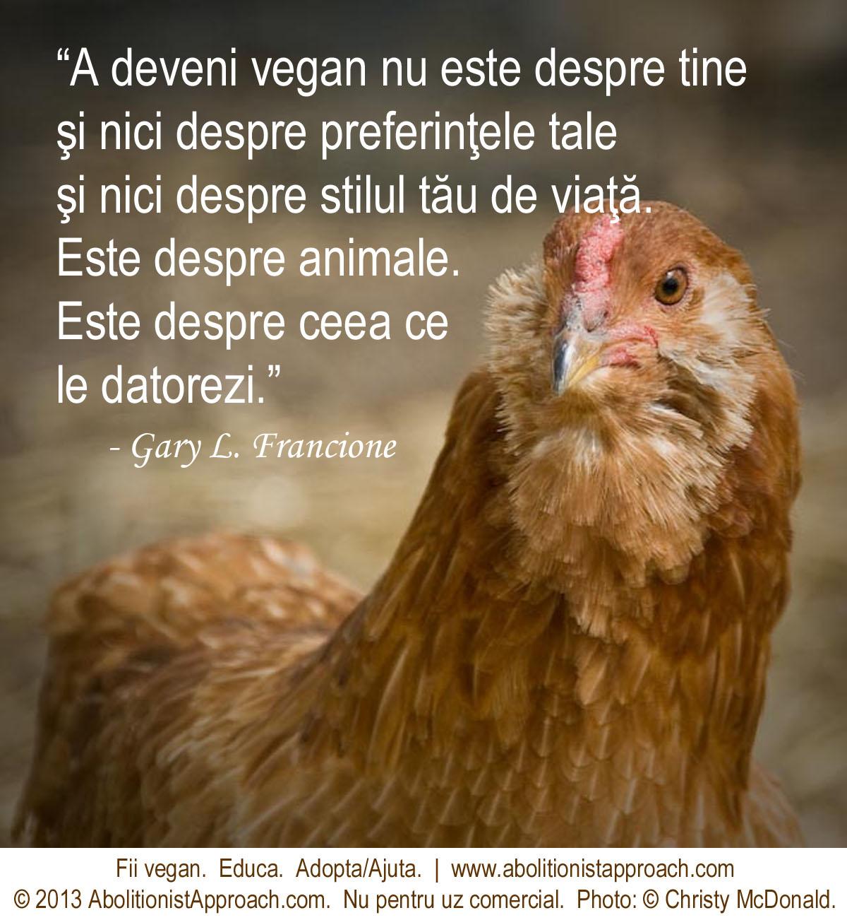 A deveni vegan nu este despre tine