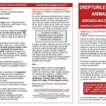 Pamfletul abolitionist prima pagina