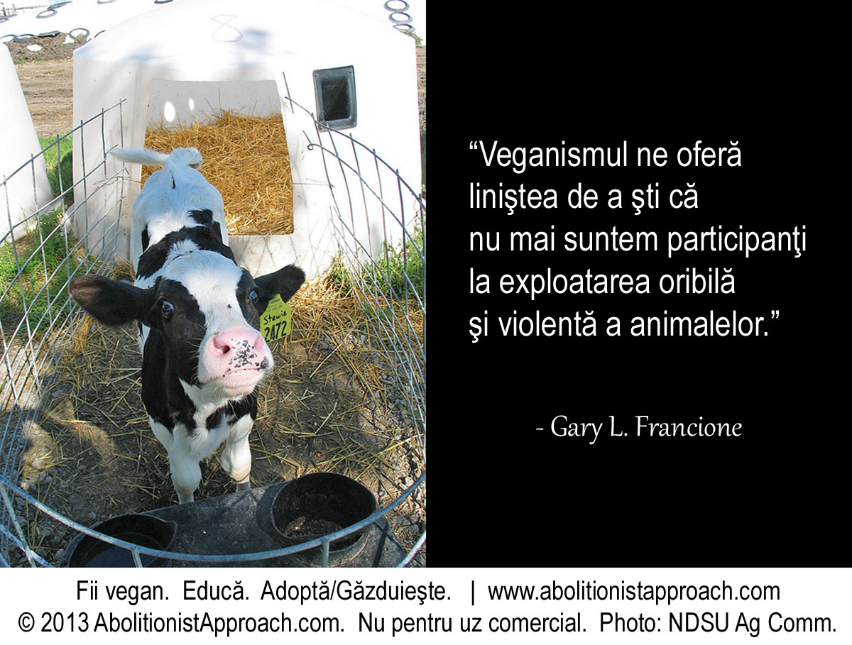 Veganismul ne oferă liniştea