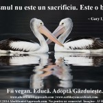 Veganismul nu este un sacrificiu. Este o bucurie.
