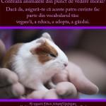 Contează animalele din punct de vedere moral?