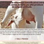 Nu există nicio diferență semnificativă între a consuma carne, lactate sau alte produse de origine animală