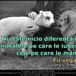 Nu este nicio diferență între animalele pe care le iubești și cele pe care le mănânci