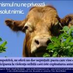 Veganismul nu ne privează de absolut nimic