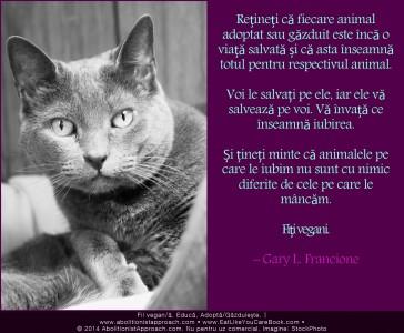 Fiecare animal adoptat sau găzduit este încă o viață salvată