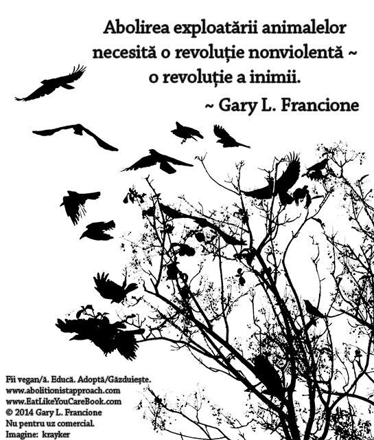 Abolirea exploatării animalelor necesită o revoluție nonviolentă