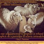Veganismul nu este doar un mod de a reduce suferința