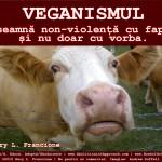 Veganismul înseamnă non-violență